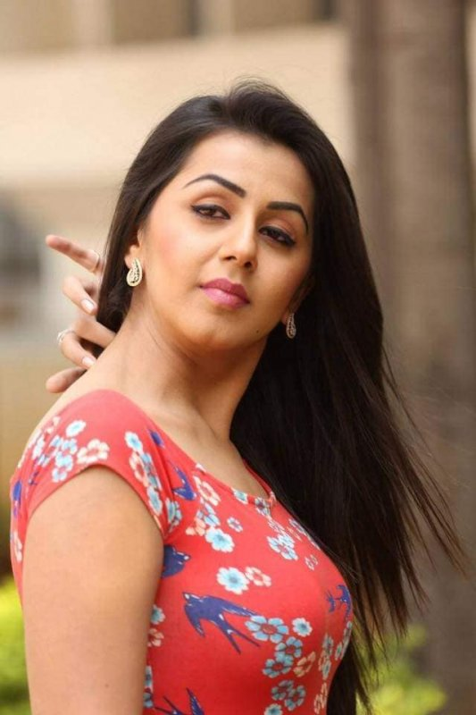 Nikki Galrani Movie Actress Picture 2610