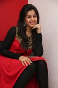 Nikki Galrani South Actress 2015 Gallery 269