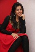 Nikki Galrani South Actress 2015 Gallery 269