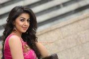 Nikki Galrani South Actress 2016 Photo 9910