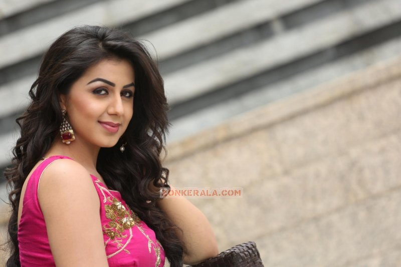 Nikki Galrani South Actress 2016 Photo 9910