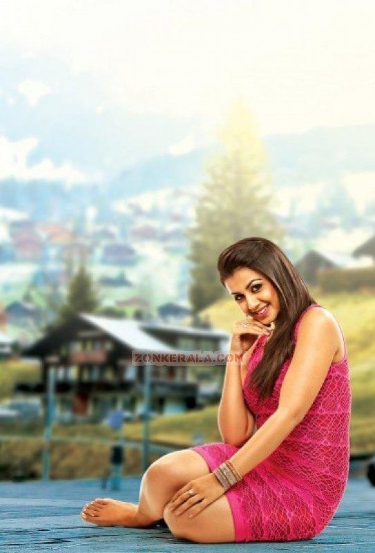 Nikki Galrani South Actress Images 7476