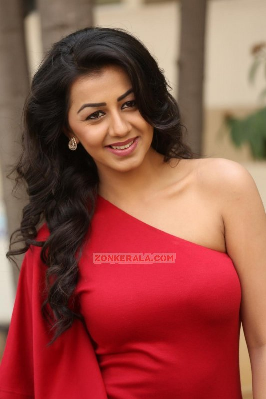 Photo Nikki Galrani Malayalam Movie Actress 3116