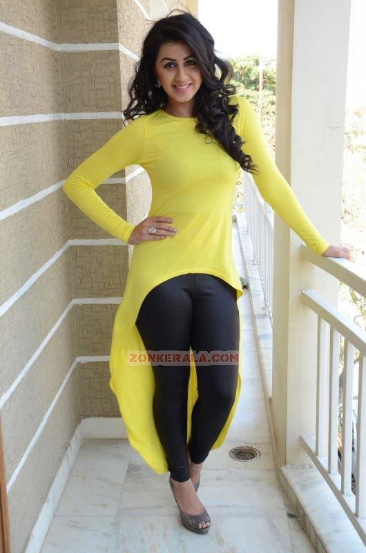 Photo Nikki Galrani Movie Actress 9720