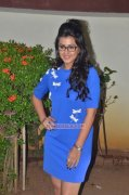Pics Indian Actress Nikki Galrani 5832