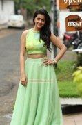 Pictures Nikki Galrani Malayalam Heroine 3841