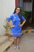 Recent Galleries Nikki Galrani South Actress 169