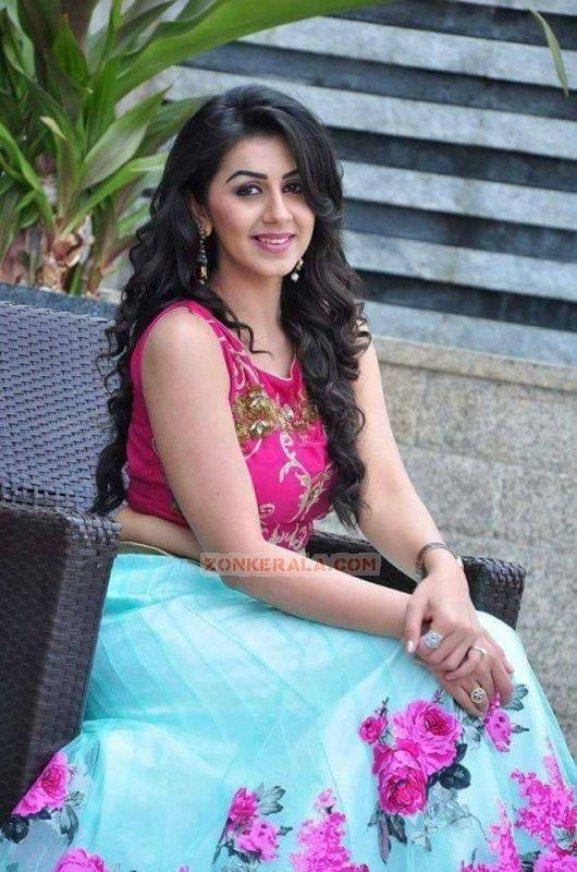 Recent Image Nikki Galrani Actress 7955