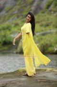 Recent Pictures Nikki Galrani Heroine 9535