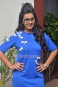 Sep 2016 Wallpaper Nikki Galrani Actress 6399