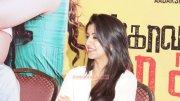 Wallpapers Nikki Galrani Film Actress 6880