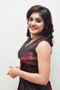 South Actress Niveda Thomas 2016 Photos 7452
