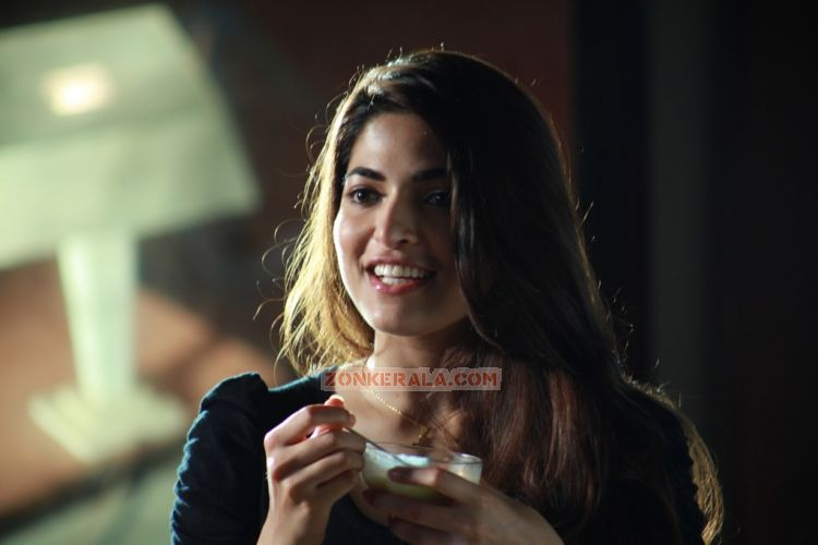 Actress Parvathy Omanakuttan Photos 9735