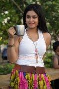 2015 Photos Movie Actress Poonam Bajwa 8580