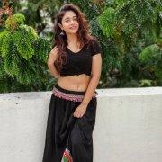 2020 Wallpapers Poonam Bajwa Cinema Actress 5922