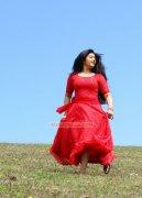 Actress Poonam Bajwa Latest Photo 970