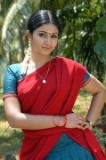 Malayalam Movie Actress Poonam Bajwa Photo 9511