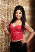 Poonam Bajwa Hot Photo 24
