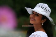Poonam Bajwa New Pic 716