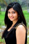 Poonam Bajwa Stills 4656