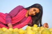 Actress Poorna 3502