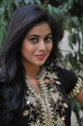 Poorna South Actress Latest Picture 3943