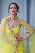 Recent Gallery South Actress Prachi Tehlan 762
