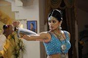 Actress Priyamani 2263