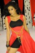 Actress Priyamani 2359
