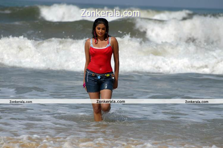 Actress Priyamani Beach Photo 4