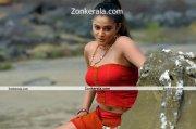 Actress Priyamani Hot Image 10