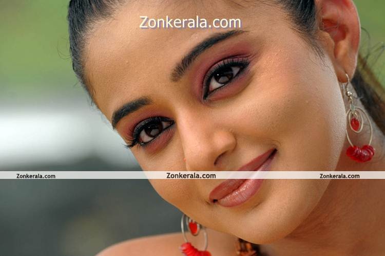 Actress Priyamani Hot Image 11