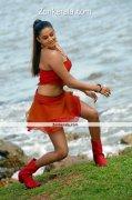 Actress Priyamani Hot Image 2