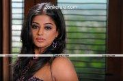 Actress Priyamani Hot Image 4