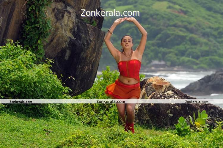 Actress Priyamani Hot Image 5