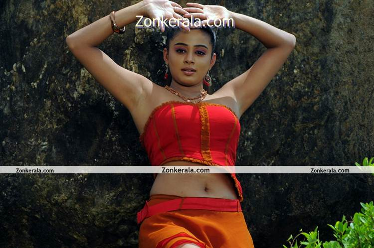 Actress Priyamani Hot Image 7