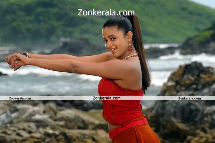 Actress Priyamani Hot Image 9