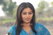 Actress Priyamani Photos 141