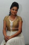 Actress Priyamani Photos 2407