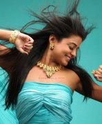 Actress Priyamani Photos 3126