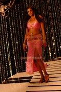 Actress Priyamani Photos 947