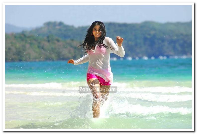 Actress Priyamani Pictures 1