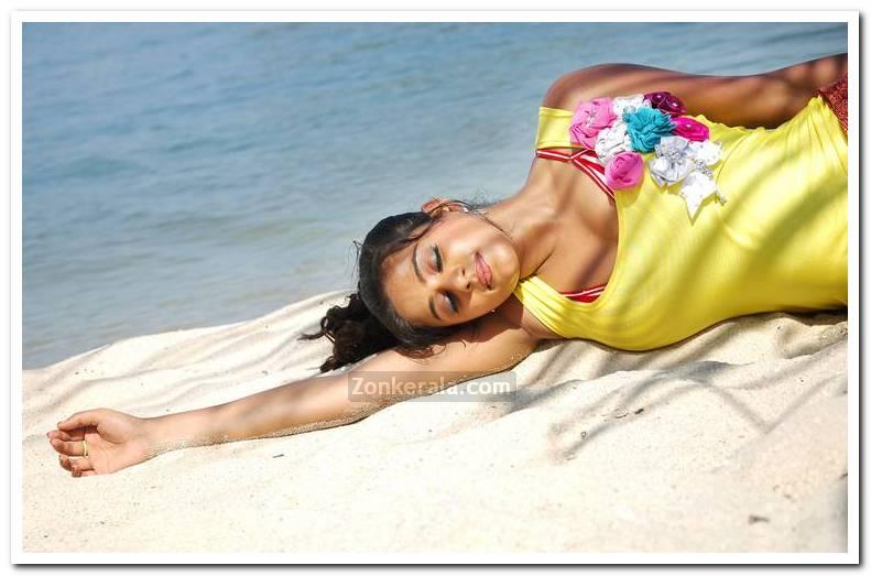 Actress Priyamani Pictures 2