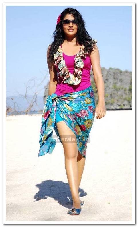 Actress Priyamani Pictures 3