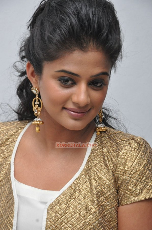 Malayalam Actress Priyamani 309