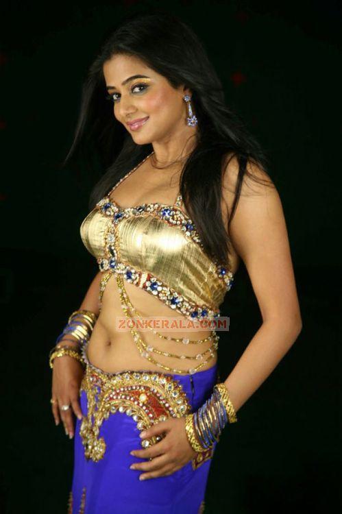 Malayalam Actress Priyamani 3656