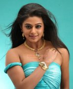 Malayalam Actress Priyamani 5146