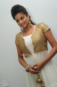Malayalam Actress Priyamani 8612