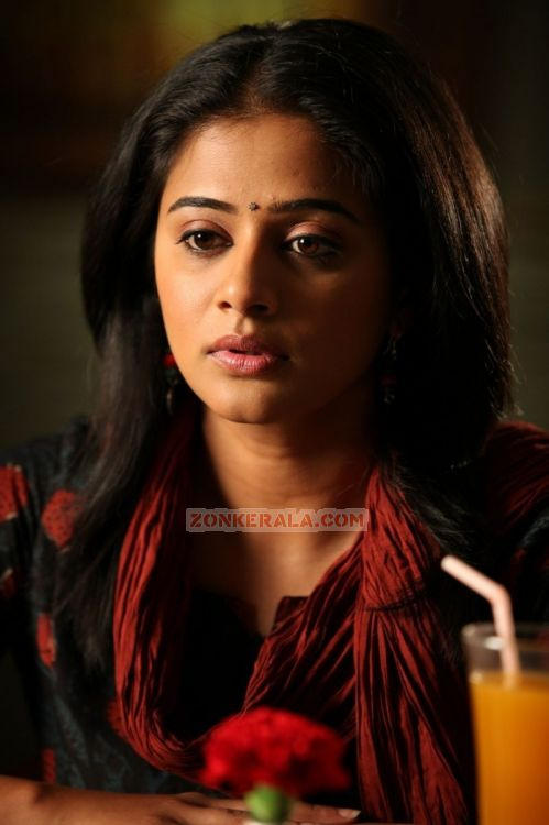 Malayalam Actress Priyamani Photos 5983