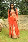 Malayalam Actress Priyamani Photos 9342
